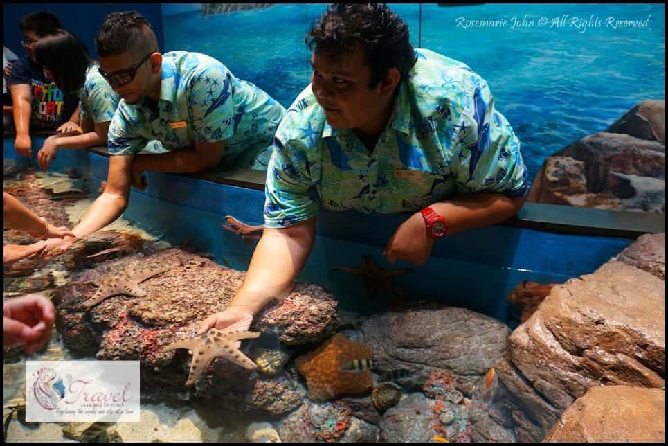 Aquarium3-RJohn