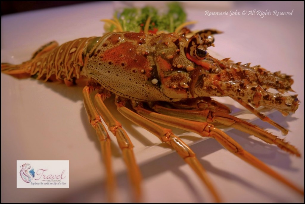 My 800 gram lobster before it hit the fire!