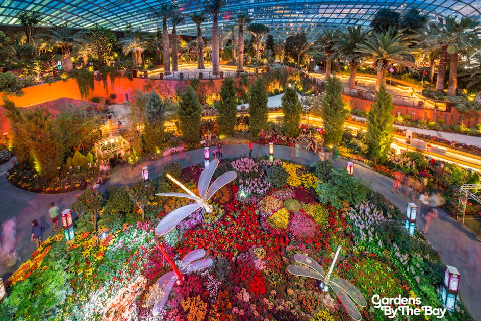 Gardens by the bay celebrates mid autumn festival - Garden by the bay festival ...