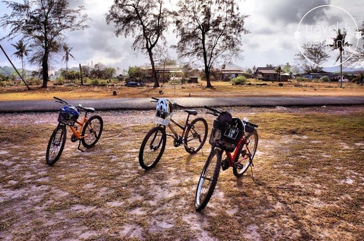 Cycle5-RJohn