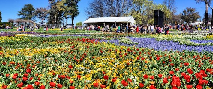 Thumbnail image for Floriade 2014 – A Plethora of Vivid Colours