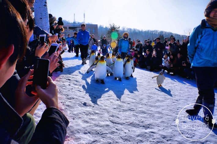 Hokkaido3-RJohn