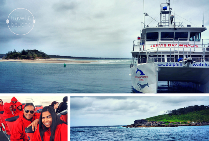 Jervis Bay Whale Watching RJohn