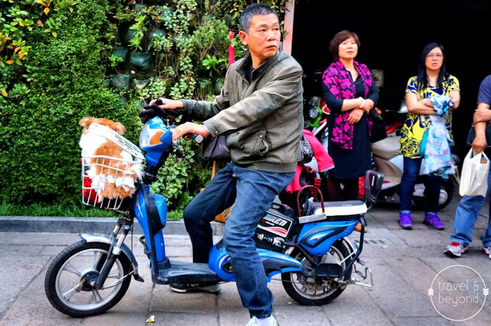 Suzhou31-RJohn